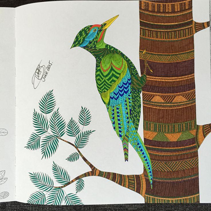Millie Marottas Animal Kingdom DWB 2015 My Gallery DrawingsActivity BooksColoring