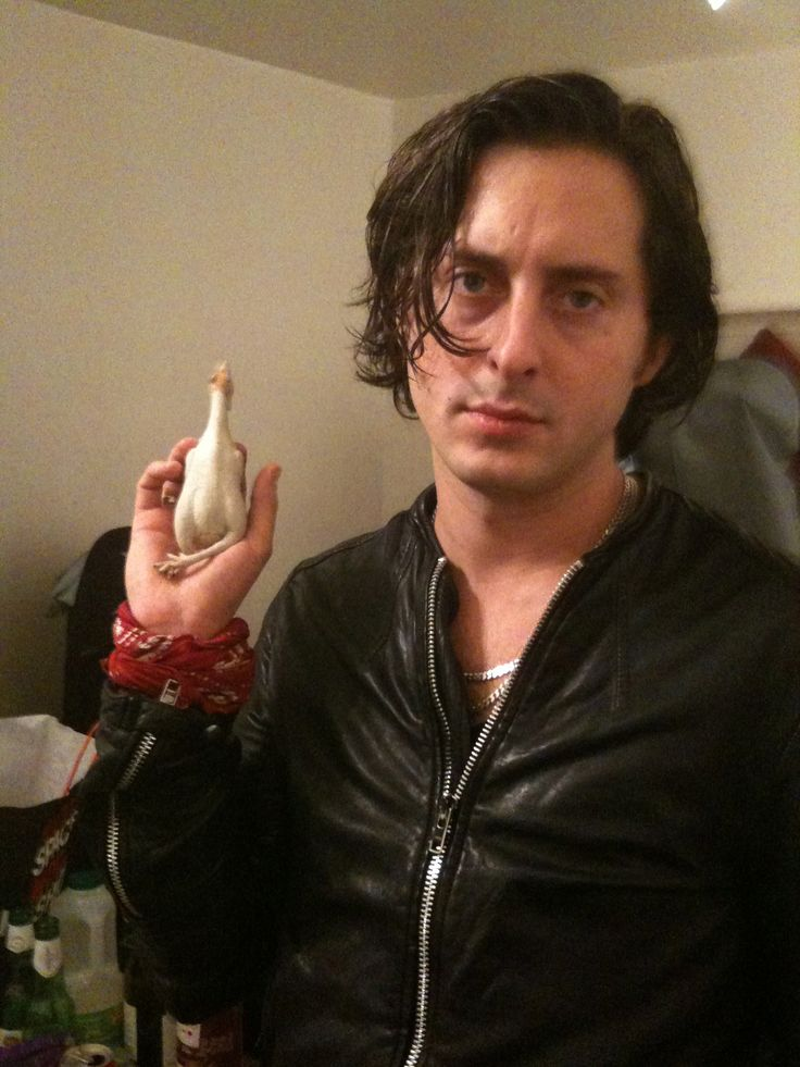 #music #rock #band #indie #the libertines #carl barat #funny