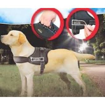 Dog Harness - Sports large #Weeklydeals #sale #dogharness #gifts #pets #Petcare
