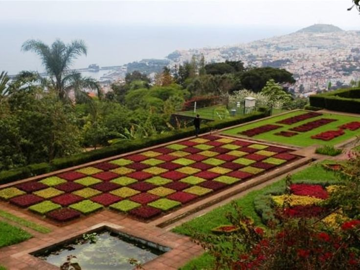 The dedicated Half Day is to one of the havens of Madeira, the Gardens! The first stop is at Monte Palace Tropical Garden, which impresses with its beauty, diversity of culture, as well as traces of the history of Portugal since the reign of D. Afonso Henriques.  #Sightseeing #tour #garden #botanical #monte #palace #funchal #madeira #island #excursion