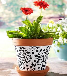 Cute flower pot