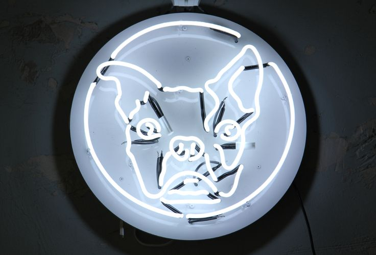 Custom neon dog sign. White neon illumination for cocktail bar in Warsaw, Poland.