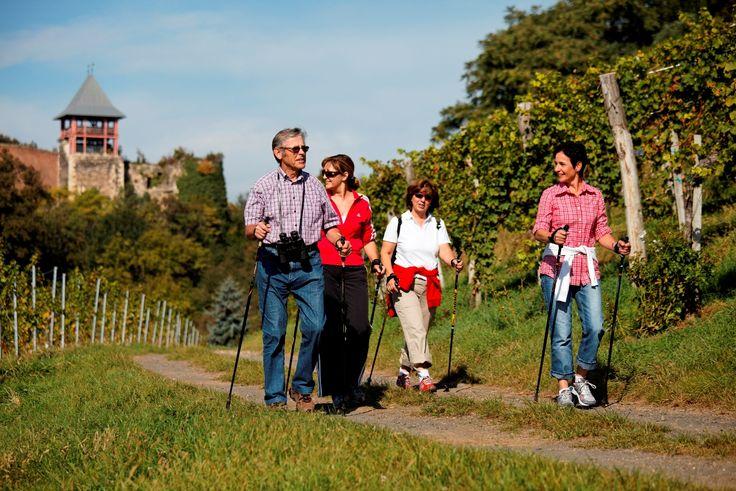 Bad Radkersburg, Klöch, Tieschen und Halbenrain wartet bei einer Wanderung die schöne Landschaft der Weinberge auf Sie.  #RegionBadradkersburg #Weinawandern #Wandertour