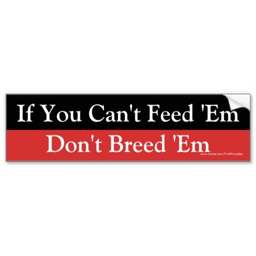 If you cant feed em dont breed em bumper sticker