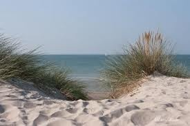 Mer du Nord depuis la dune
