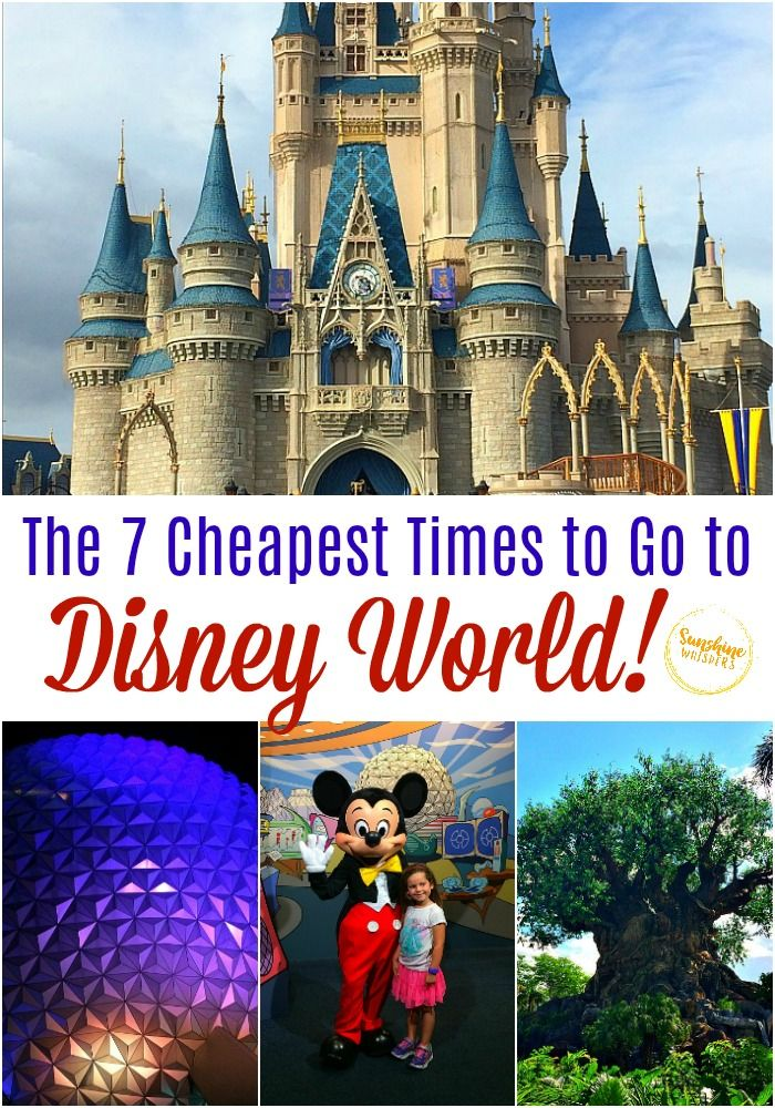 The 7 Cheapest Times To Go To Disney World Disney World Tips And