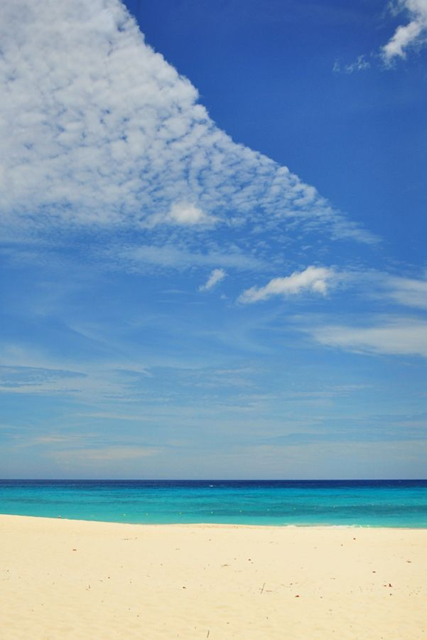 Aruba. I so want to go back...Had the time of my life snorkeling on a local beach. The coral was wicked, tho.