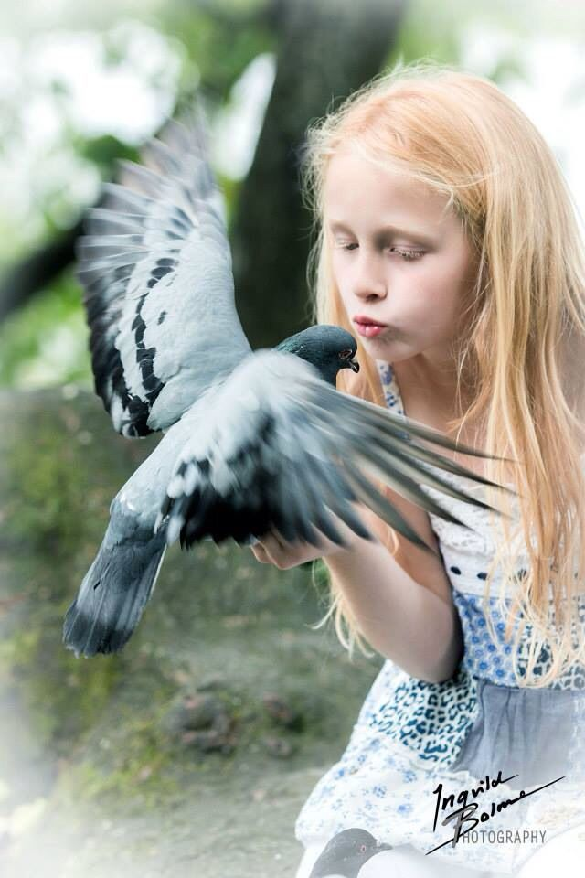 My daughter with a dove  © Ingvild Bolme Photography ingvildbolmephoto @ Facebook