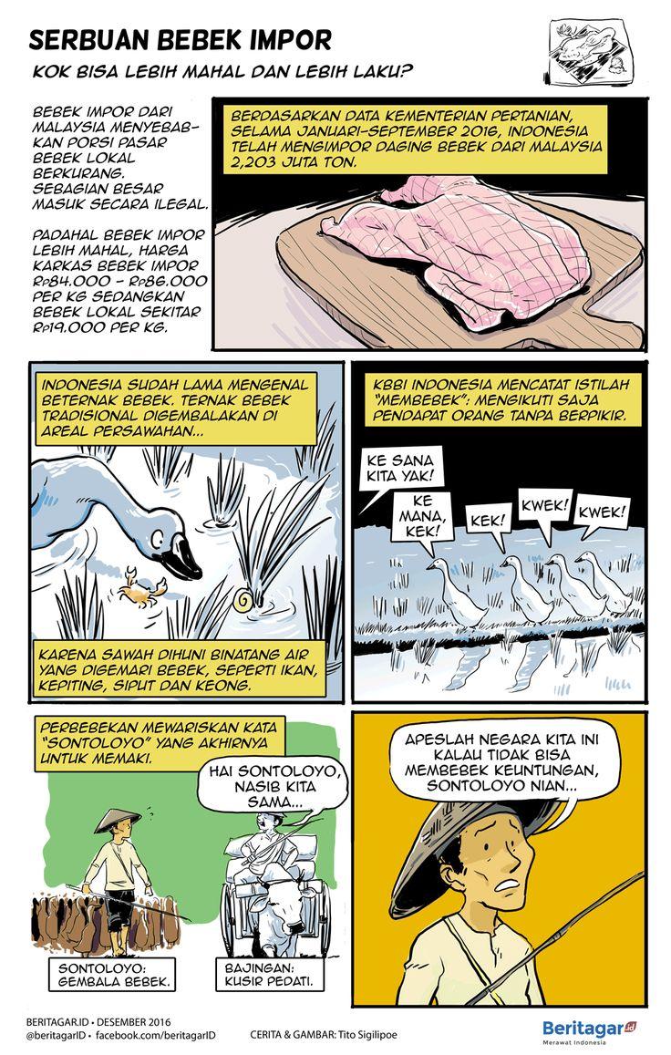 MEMBEBEK | Persoalan tak usai dengan melarang daging bebek impor. Daging bebek lokal, untuk jenis potong, harus bisa membebek dan akhirnya dibebeki kualitas si asing.
