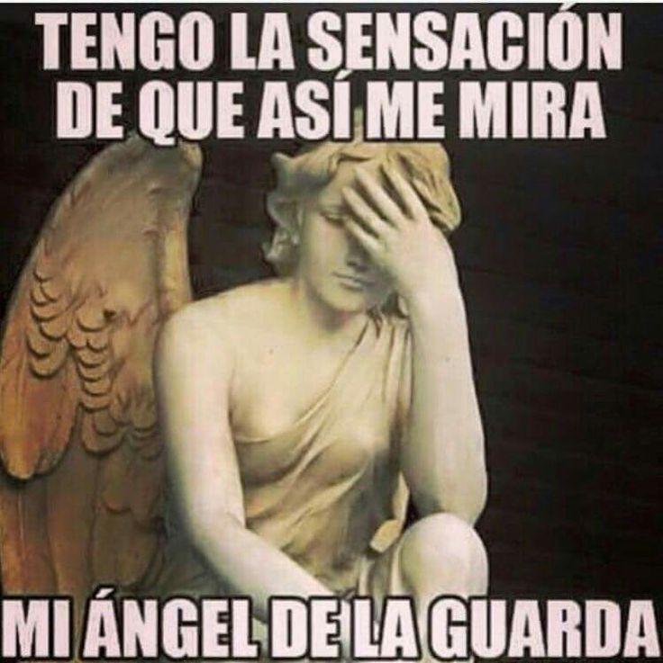 Tengo la sensación de que así me mira mi ángel de la guarda #risa #humor