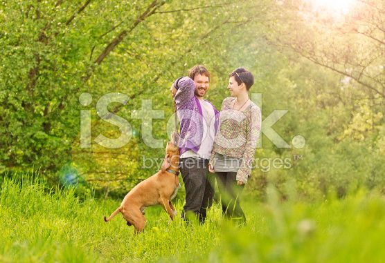 young beautiful couple walking and playing dogs royalty-free stock photo