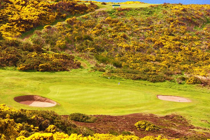 Golf course in Scotland. Golfbaan in Schotland.