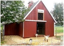Small Barn Plans - Build a little barn as your studio, backyard office, tractor garage, animal shelter or, whatever. Plans for dozens of designs are on sale at BackroadHome.net.