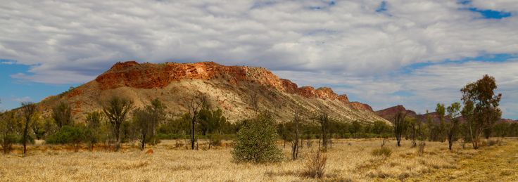 The beginning of the Macdonnell Ranges just outside Alice.