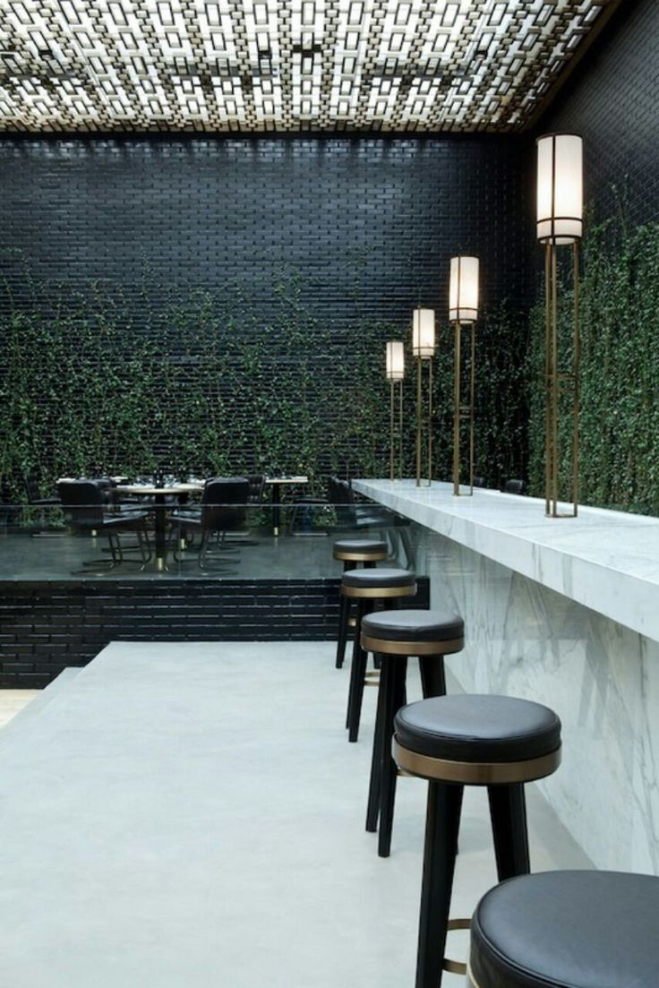 indoor vines at Beefbar restaurant in Monaco