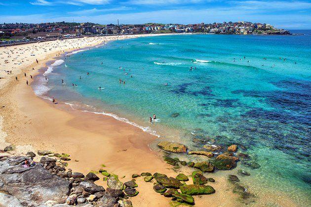Image result for unique beauty of australia