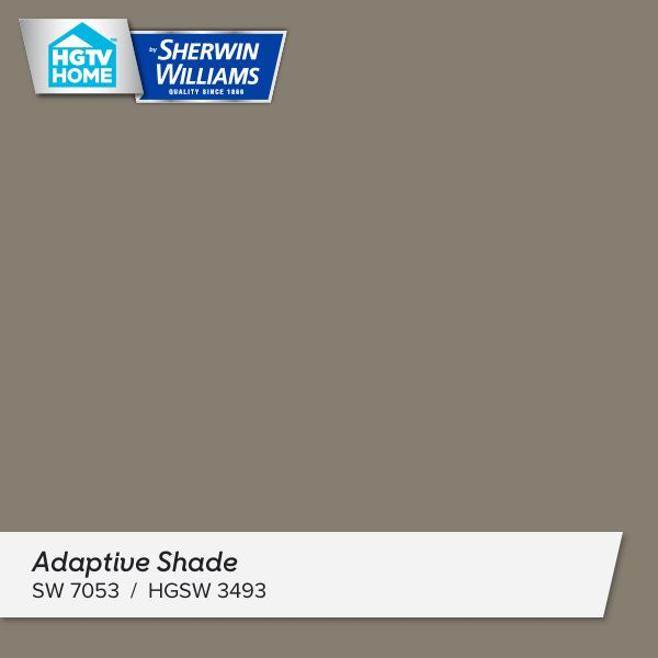 I really like this paint color - Adaptive Shade . What do you think? http://www.hgtvhomebysherwinwilliams.com/color-collection/Natural-Wonder