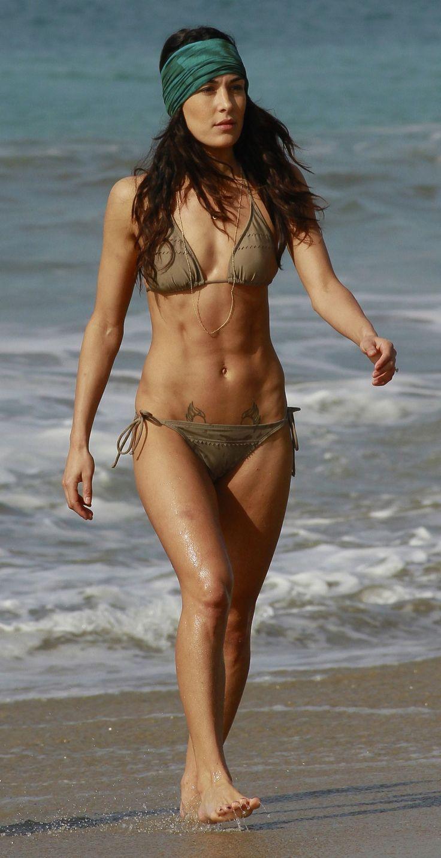 Nikki bella bikini brie and