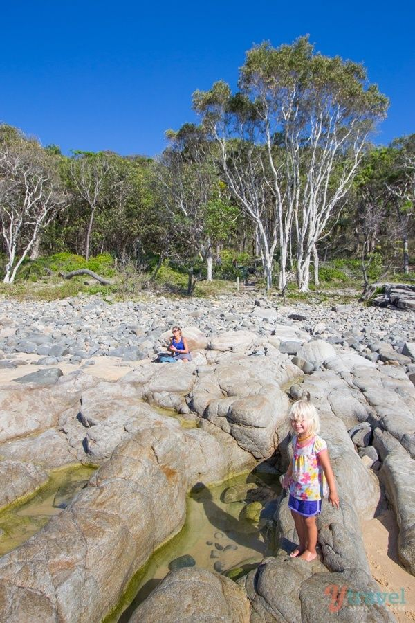 Noosa National Park, Queensland, Australia