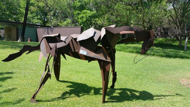 Retired War Horse at clients bespoke property.