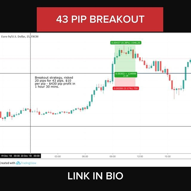 Learn To Trade The Markets Like An Expert Trading Forex