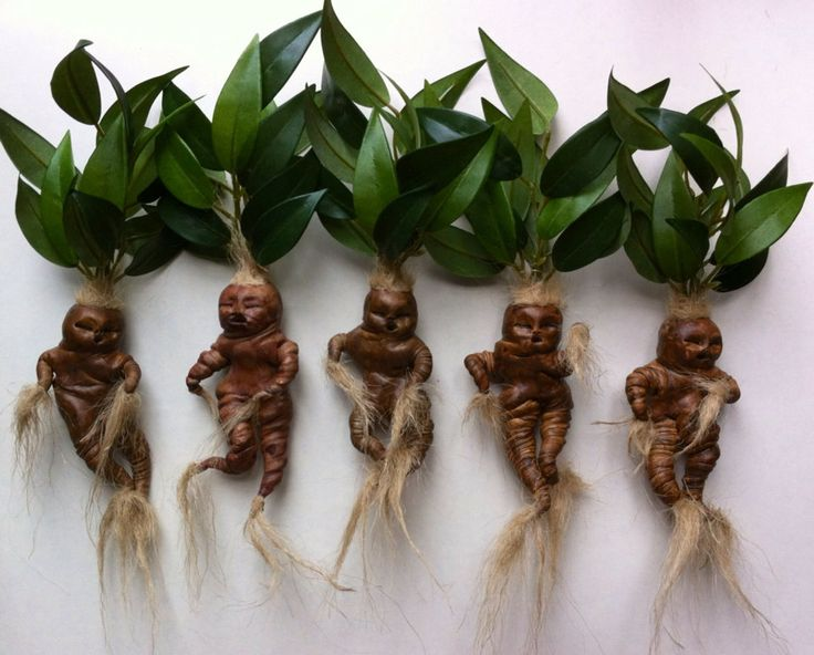 best 25  harry potter dolls ideas on pinterest