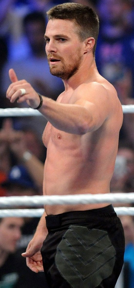 """""""Stephen Amell shows off his muscular physique while going shirtless for the 2015 WWE Sum- merSlam event held at the Barclays Center on Sunday (August 23) in Brooklyn, N.Y. The 34-year-old 'Arrow' actor teamed up with Neville and they defeated King Barrett and Stardust in a tag-team match."""""""
