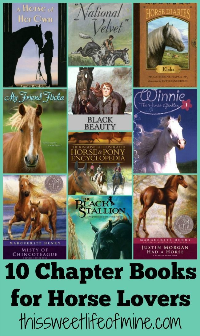 printable horse birthday party invitations free%0A    Chapter Books for Horse Lovers