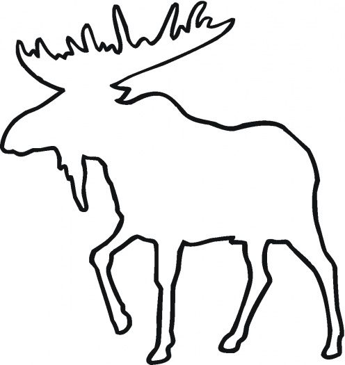 free grizzly bear coloring pages | Deer Outline coloring page | Super Coloring