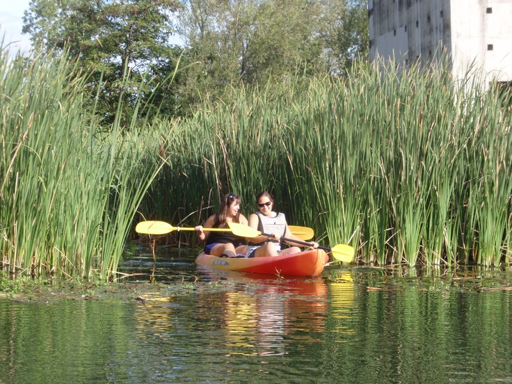 Kayaking #incostabrava #girona! Great experience on the Ter river