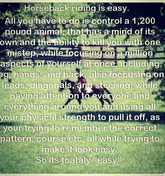 I need to show this to the next person who tells me horseback riding is easy because all you do is sit on the horse
