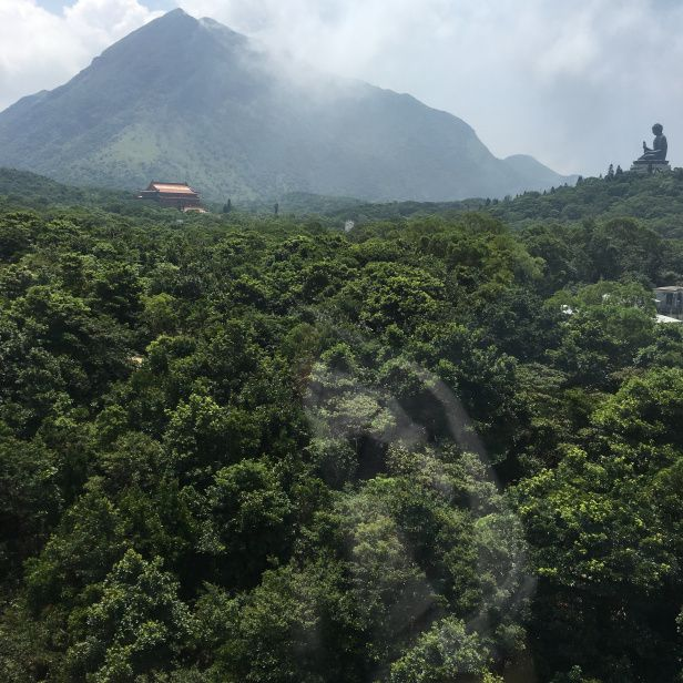 Travel to Hong Kong and visit Lantau island, the monastery is simply delightful