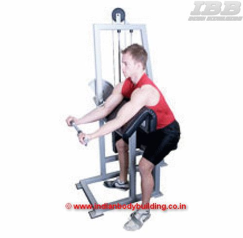 Biceps Machine Curls - Exercise  Movement