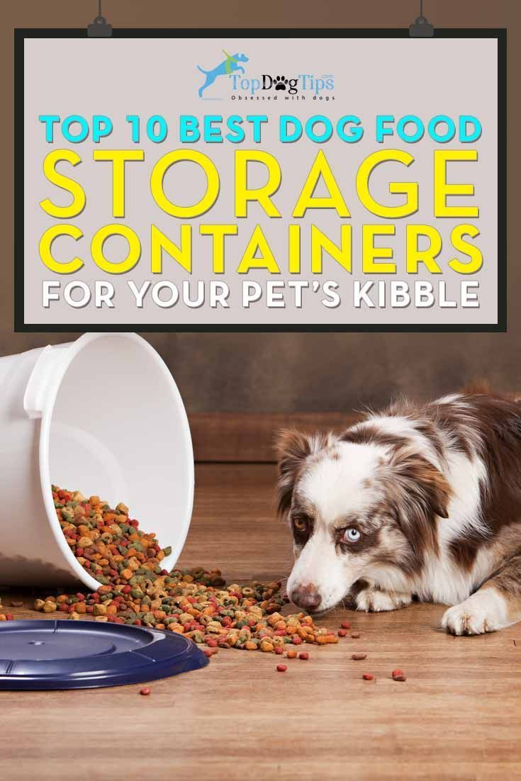Best Dog Food Storage Container: HUGE Top 10 Review (2016). Looking for the best dog food storage container? We all understand that buying dry dog food in bulk is a great way to save a little money, but if it's not stored properly, it could lose some nutritional value or spoil. If that happens, you're not saving any money at all, because you'll be throwing out dog food that could have been used if you had the proper storage tools. #dogfood #dogs