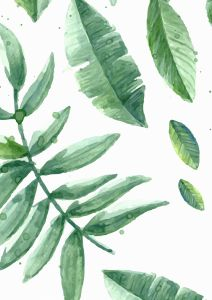 Poster botanico