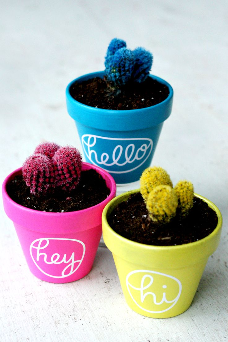 Cheap vinyl for crafts - Vinyl For Crafts Cheap Give Your Cactus An Adorable New Home With This Diy Cactus
