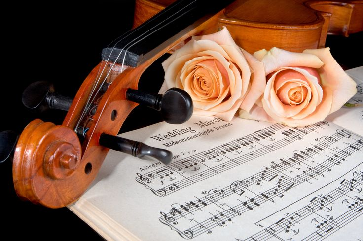 Sheet music of the Wedding March; with roses and violin #music #mariage