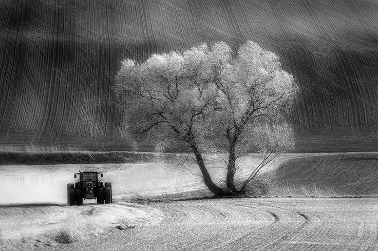 Southern Moravia, Czech Republic, Spring 2011  http://www.facebook.com/Piotr.Krol.Photography