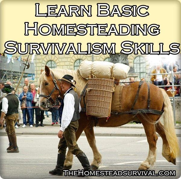 Learn Basic Homesteading Survivalism Skills