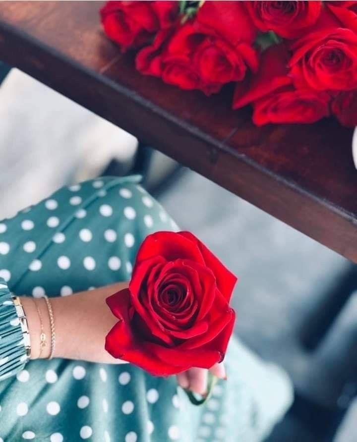 ويكفيني من الدنيا جمال ا دعاء من م حب دون علمي ي ناجي الله يسأل ه هنائي وي رسل في الدجى لله اسمي Flowers Rose Plants