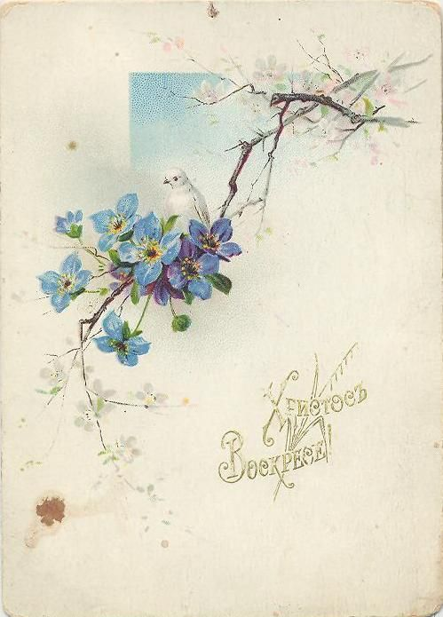 Прекрасная эпоха модерна - Старинные пасхальные открытки. Часть шестая