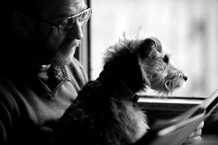 """Ένας άντρας και ο σκύλος του ταξιδεύουν με το τρένο και κέρδισαν την πρώτη θέση στην κατηγορία """"Ο καλύτερος φίλος του ανθρώπου"""" / Fiona Sami/PA"""