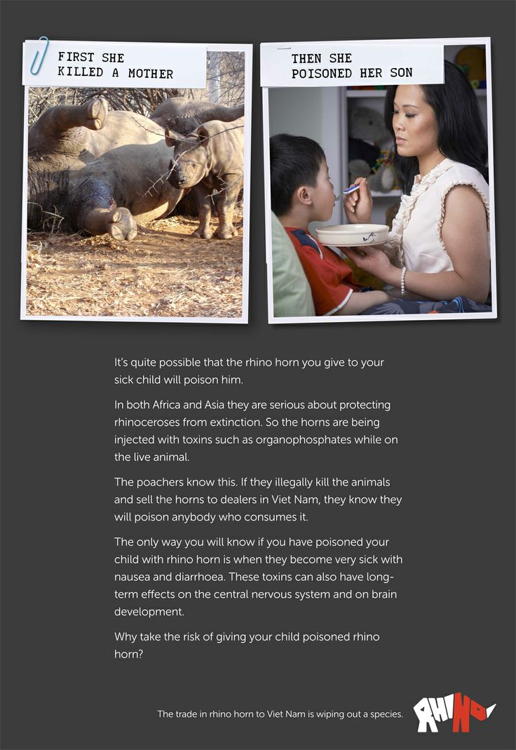Breaking the Brand of Rhino Horn use in Viet Nam   Donate to our campaign at Indiegogo http://www.indiegogo.com/projects/breaking-the-brand-of-rhino-horn-use-in-viet-nam