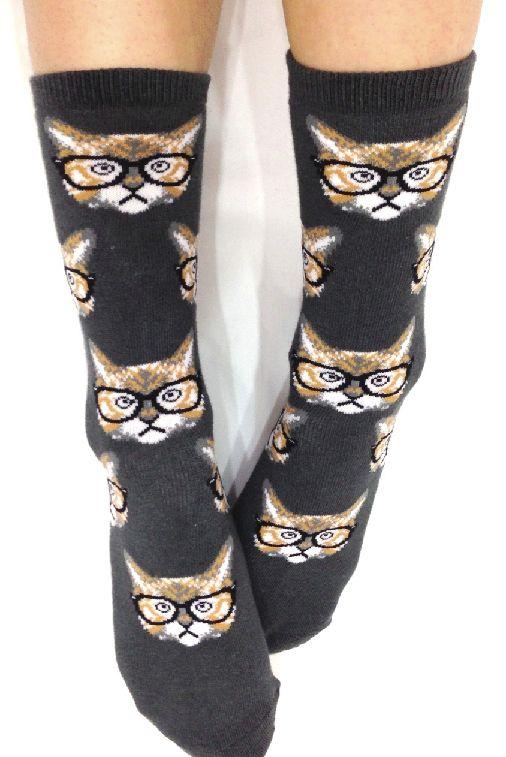 So cute! #cat #socks