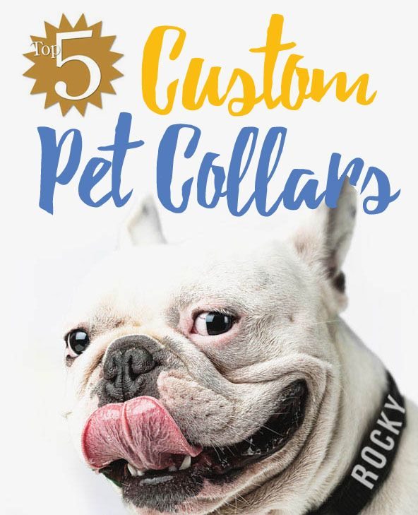 Top 5 Custom Pet Collars - Pamper your pooch with a personalized dog collar. Your pets name and your phone number embroidered or laser engraved.