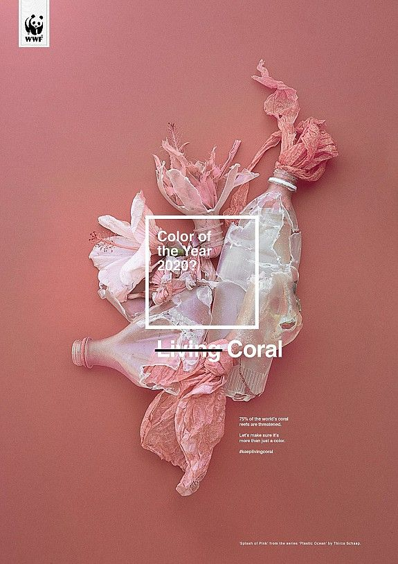 Print Ad Wwf Coral Color Of The Year Wwf Poster Wwf