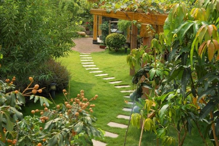 Am nagement all e de jardin types et id es int ressants belle design et d co - Amenagement jardin exotique versailles ...