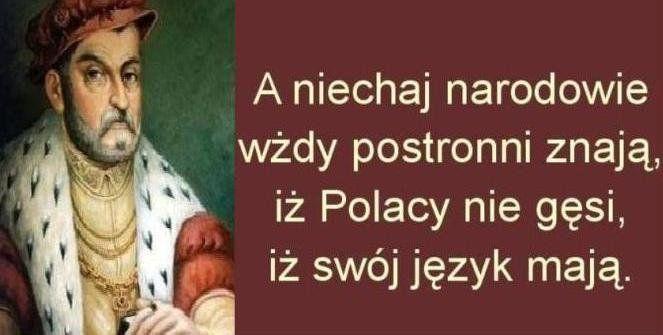 Introwertyczka (@Introwertyczka1)   Twitter