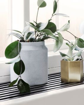 Blumentopf grey