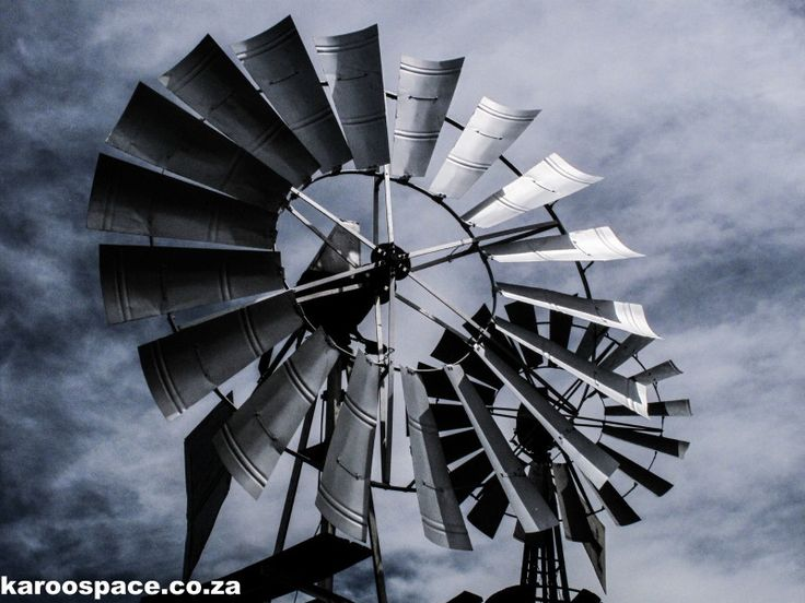 Steel Flowers - Windpumps of the Karoo